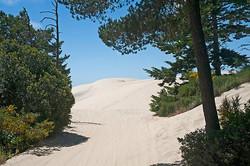 Dune-ride-6600