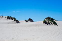 Dune-ride-6605