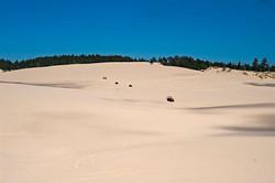 Dune-ride-6612