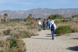 Yucca Valley 2009_0252