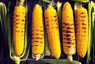 maïs rôti
