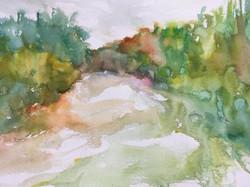 Landscape - new