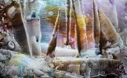 Petrified - Susanne McGinnis