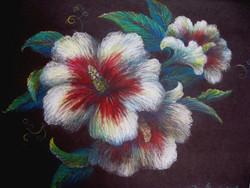 Hibiscus - Susanne McGinnis