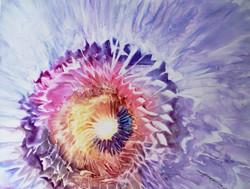 Fiore #1 03c
