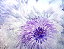 Fiore #3 01c
