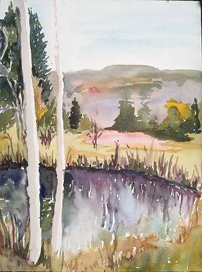 Pond with Birches.jpg
