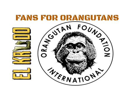 EK Fans for Orangutans!