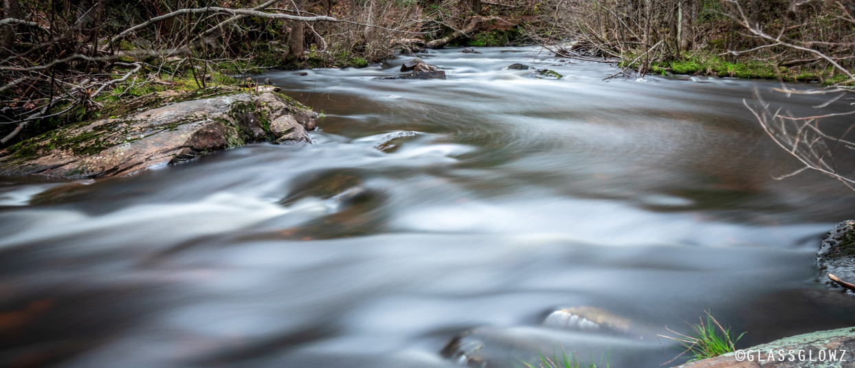 Backwoods Creek