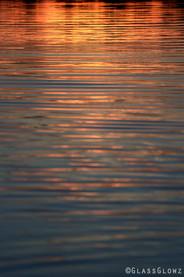 Fitzroy Harbour Sunset - Golden Blue
