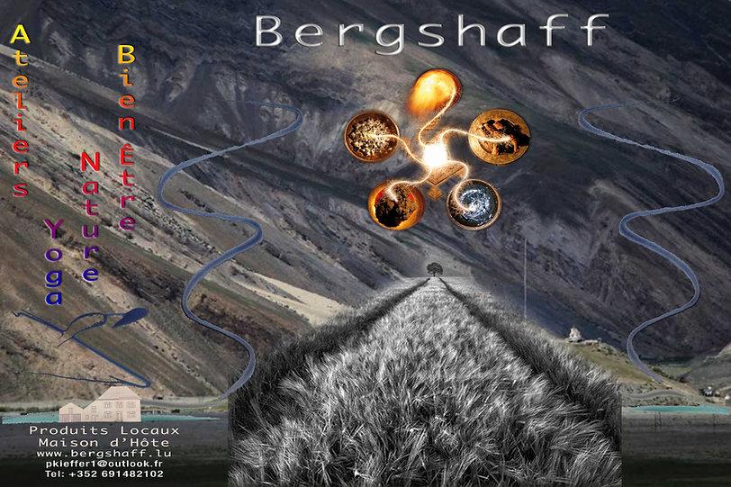 Bergshaf5ELTS_OK.jpg