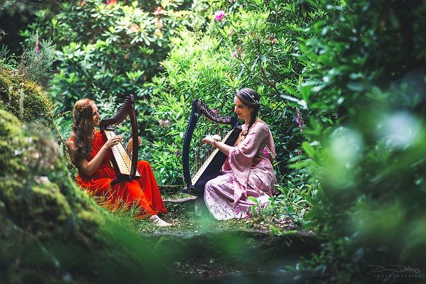 Damien Delburg - harpistes en Broceliand