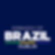 Embassy of Brazil in Dublin logo