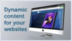 02 Dynamic website image.jpg