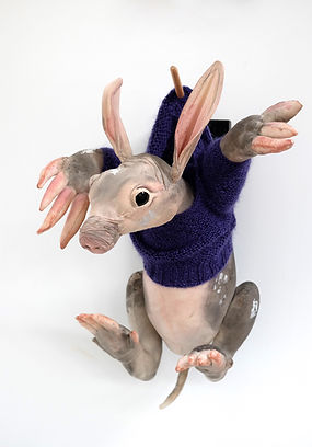 _A_ is for Aardvark