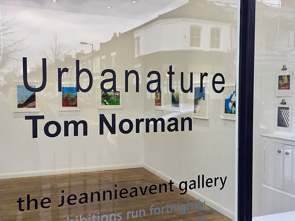 Tom Norman - Urbanature solo exhibition 2017