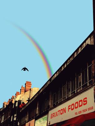 'Brixton Bird'