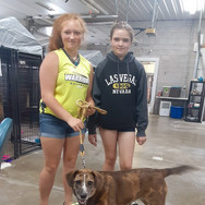 Dolly adopted!