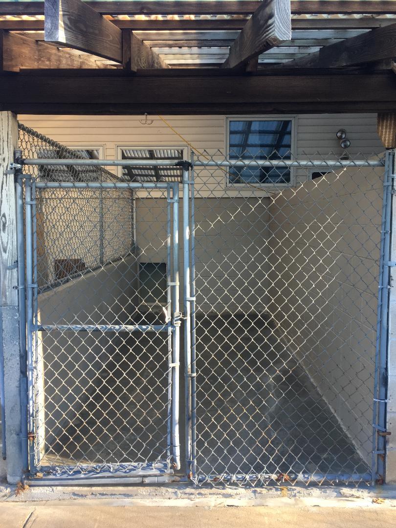 Multiple Dog Kennel Outside