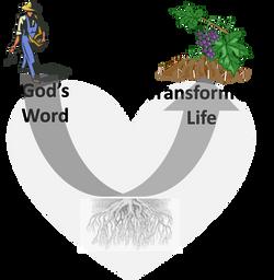 Transformative Biblical Model