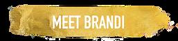 webbranditab.png