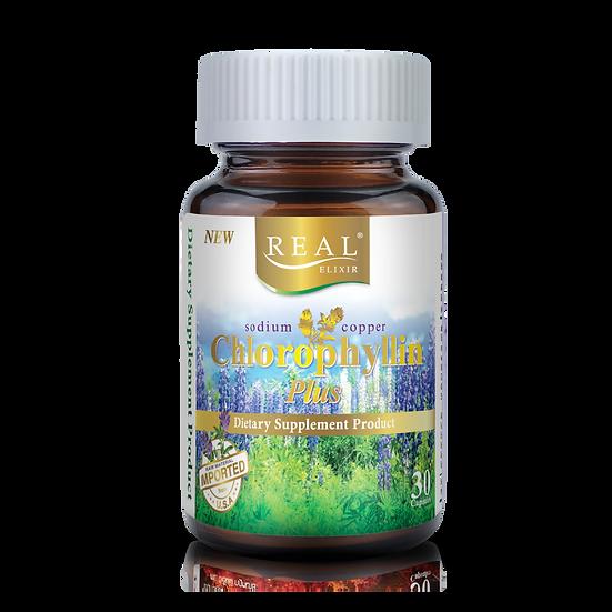 Real Elixir Sodium Chlorophyllin