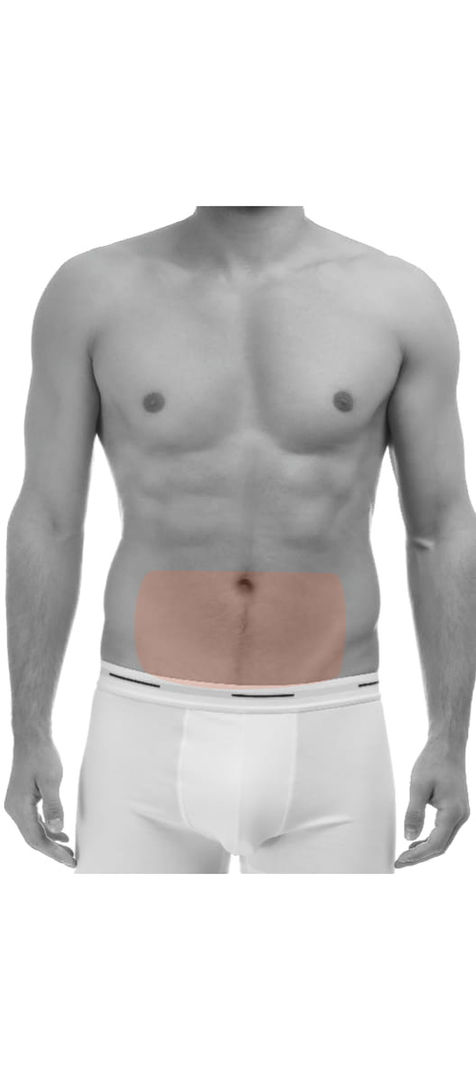 Lower Stomach