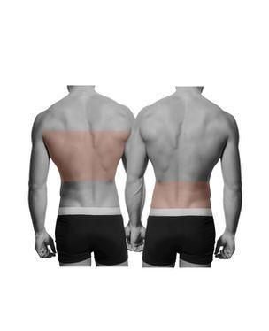 Mid Back OR Lower Back
