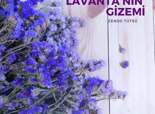Lavanta'nın Gizemi