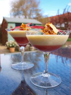 Rhubarb and custard dessert