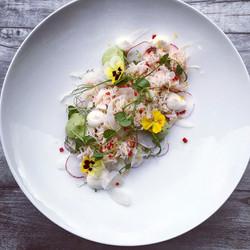Crab salad, radish, fennel, avocado mous