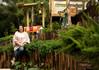 A paisagista Rosângela Sabbag apresenta o Jardim da Casa Cor Paraná