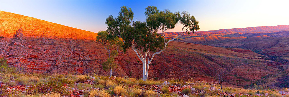 Prints | Outback | West MacDonnell Ranges