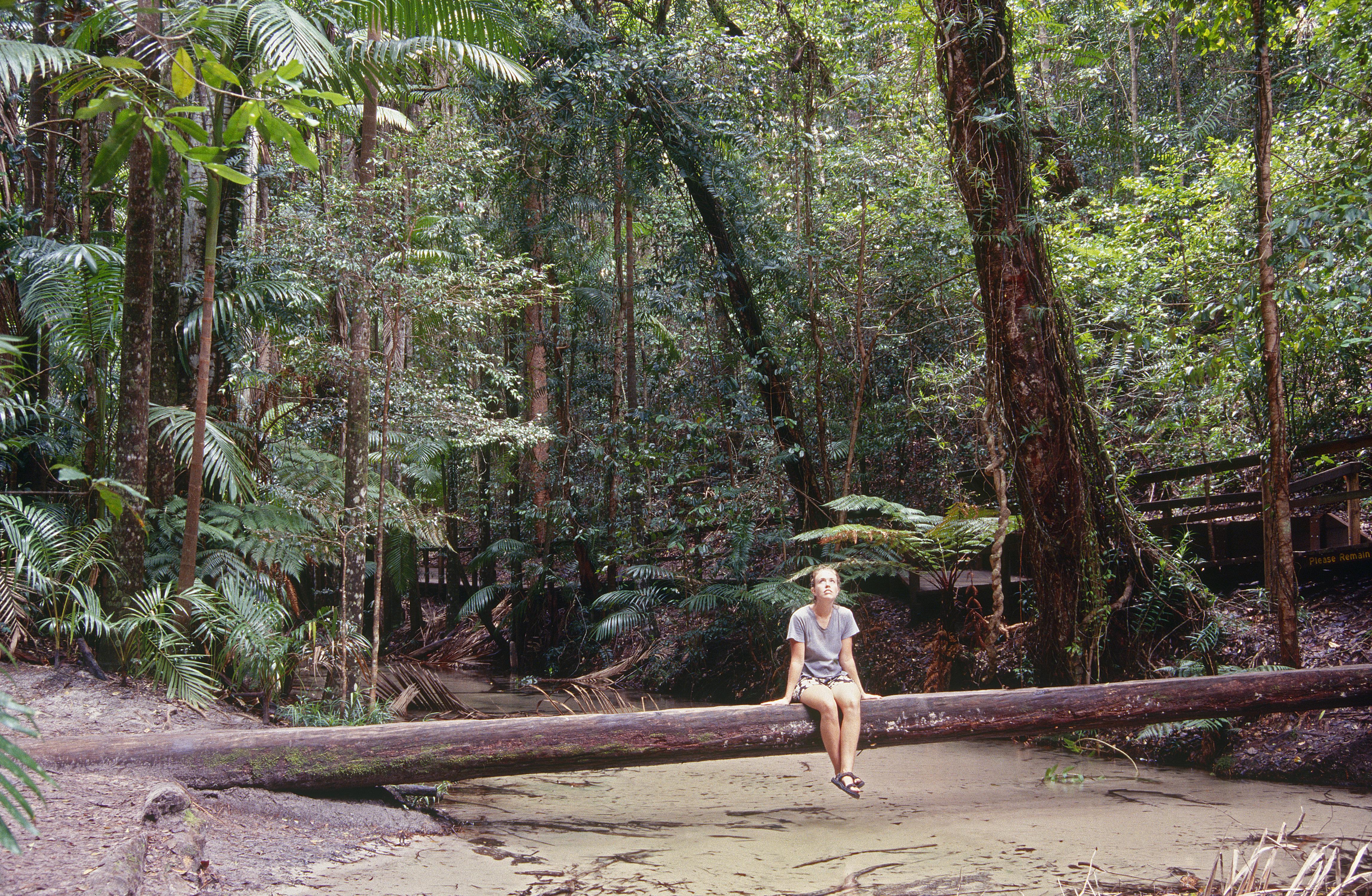 Wangoolba Creek, Fraser Island