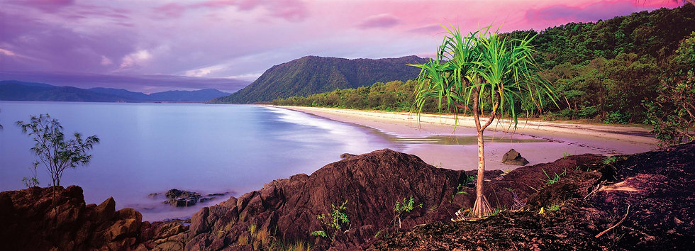 "Prints | Seascapes | ""Morning glory within the Daintree"""