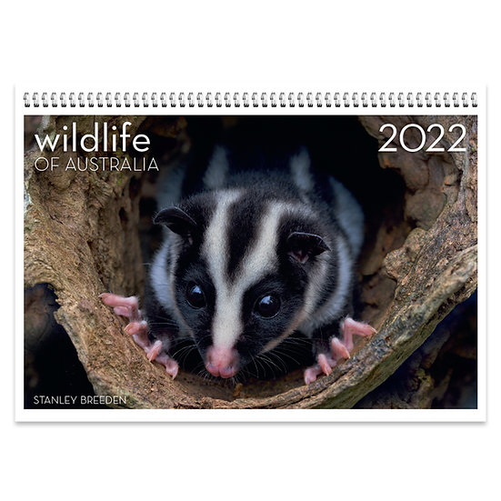 2022 Wildlife of Australia Wall Calendar