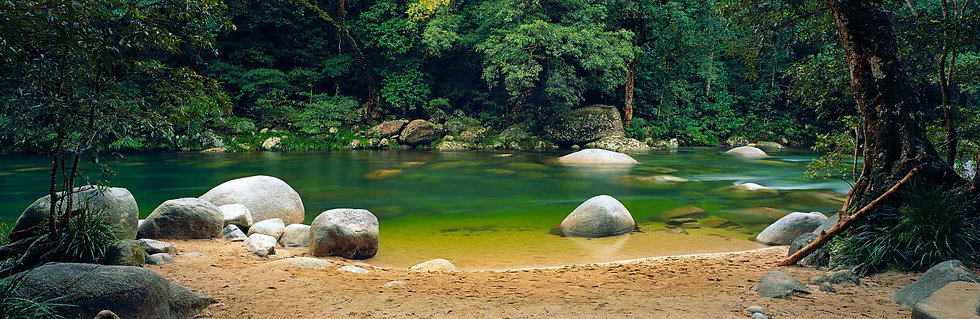 Prints | Rainforest | Mossman Gorge