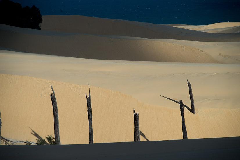 Prints | Seascapes | Badjula Sandblow #2- Fraser Island