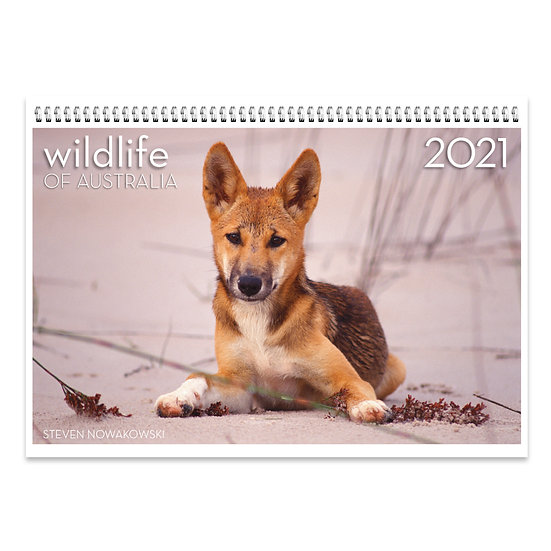 2021 Wildlife of Australia Wall Calendar