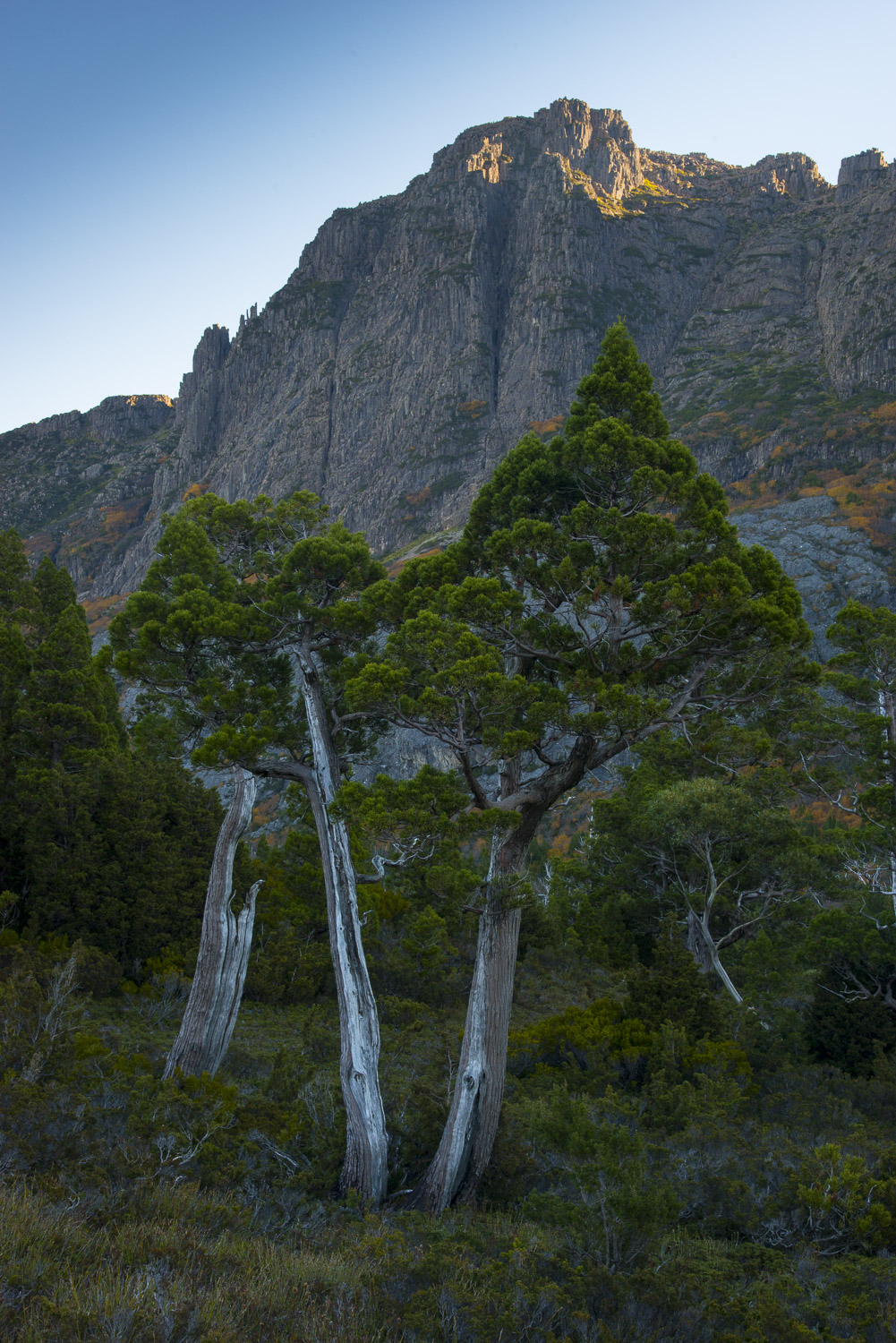 Sunset over Cradle Mountain