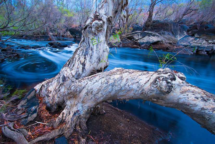 Prints | Lakes & Rivers | Embrace - Palmer River