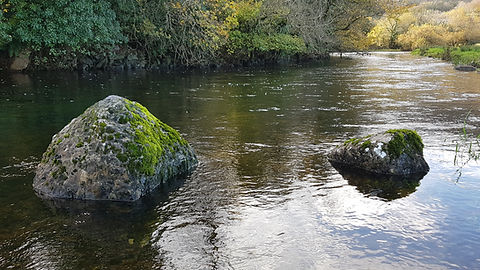 Pauline Bradley River View 11.jpg