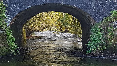 Pauline Bradley Bridge 3.jpg
