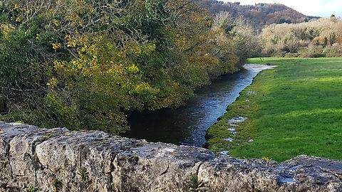 Pauline Bradley River View 5.jpg