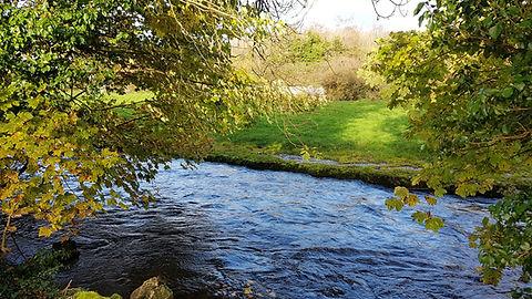 Pauline Bradley River View 2.jpg
