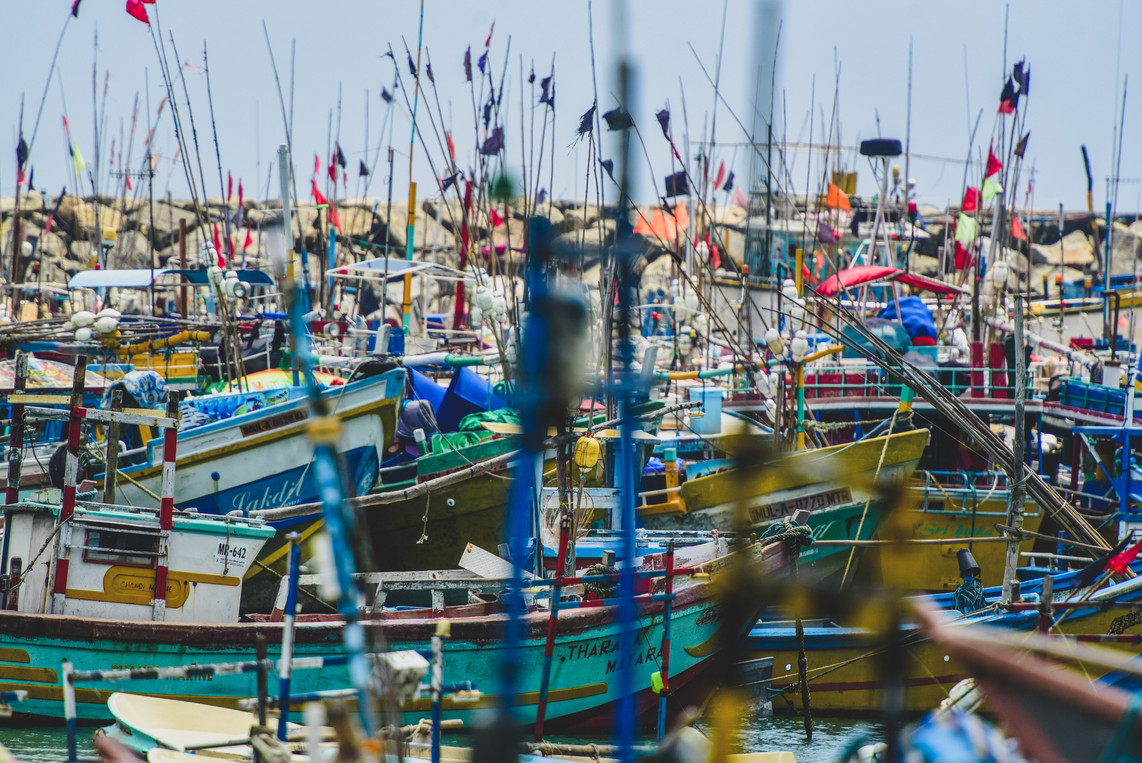 Colourful Harbour