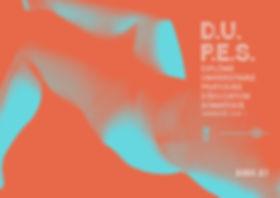 UNIVLYON1 DUPES 2020 Plaquette A4 WEB (1
