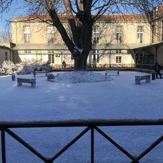 Enneigement décor pour tournage avec neige artificielle Regular Snow