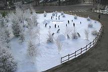 Décor_neige_regular_snow_avec_sujets_et_