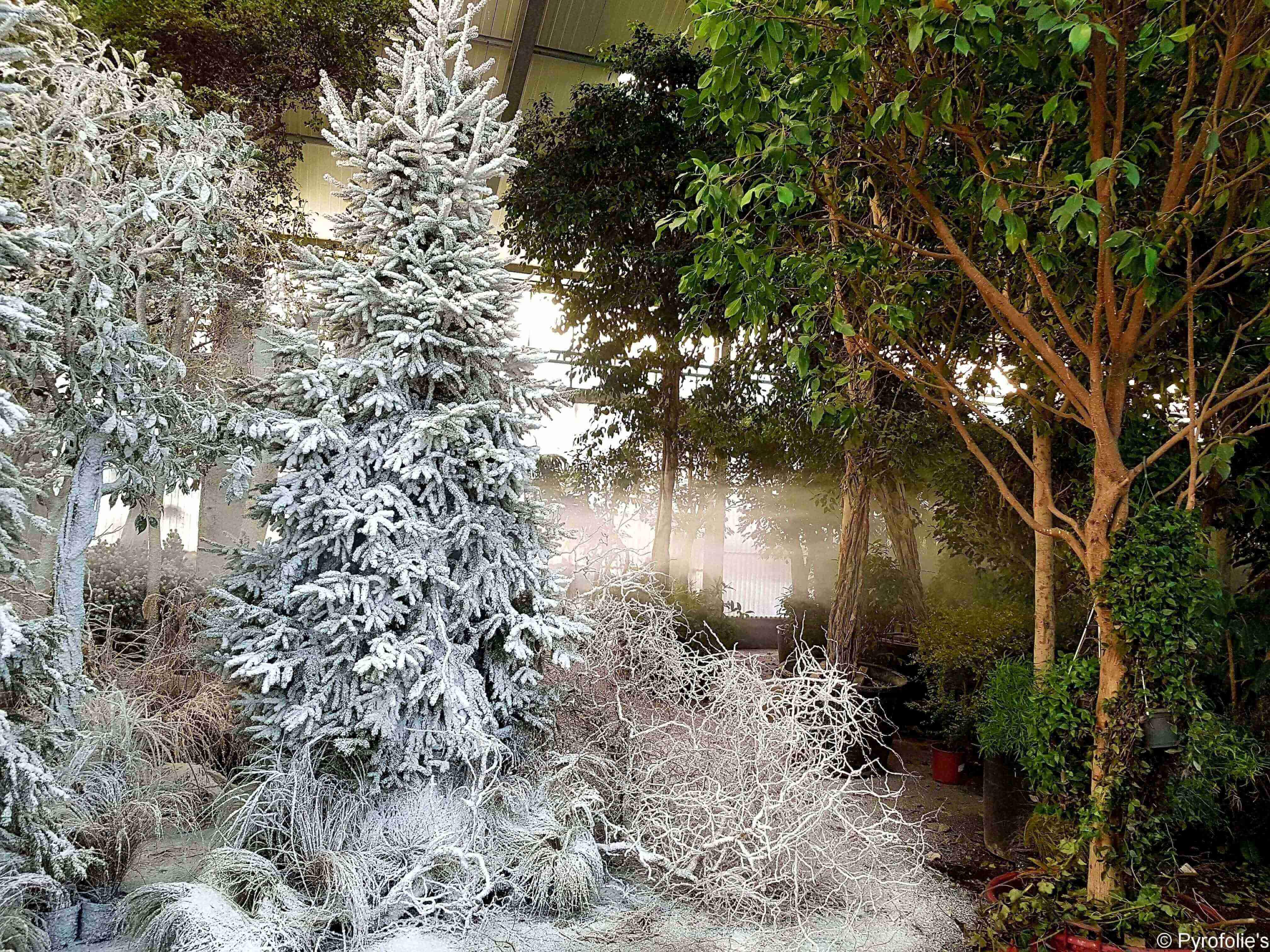 Décor Neige artificielle Regular Snow sur végétation